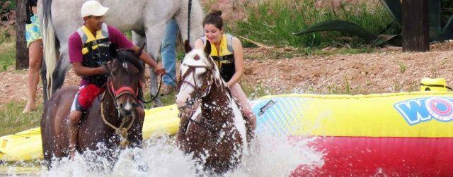 Nadando con los caballos